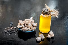 Dried ginger with oil and nutmeg powder. Dried ginger or soth or Zingiber officinale with nutmeg powder and its extracted oil for good digestion and medicine Royalty Free Stock Photos