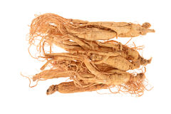 Dried Ginseng Roots Stock Photos