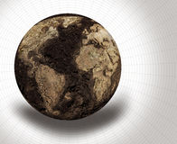 Dried Globe Stock Images