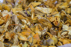 Dried Globeflower herb Royalty Free Stock Photos