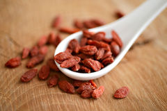 Dried goji berries Stock Images