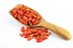 Dried goji berries on white royalty free stock images