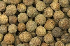 Dried grains allspice  closeup Royalty Free Stock Photos