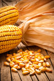 Dried grains of maize Stock Photo