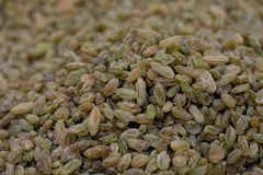 Dried grapes Stock Photography