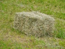 Dried grass in a bale Royalty Free Stock Image