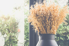 Dried grass or flower in black jug on cafe for decoration Stock Photo