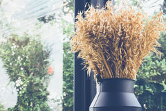 Dried grass or flower in black jug on cafe for decoration Royalty Free Stock Image