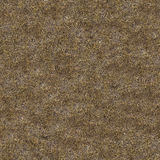 Dried Grass. Seamless Tileable Texture. Royalty Free Stock Photography