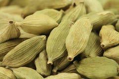 Dried green cardamom seeds Royalty Free Stock Photos