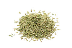 Dried green the fennel seeds Stock Photography
