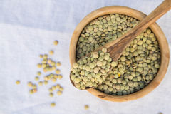 Dried green lentils Royalty Free Stock Photos