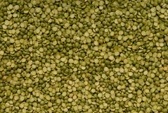 Dried green pea royalty free stock photos