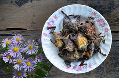 Dried grilled bullfrog in ceramic dish. With violet flowers on wood floor stock photos