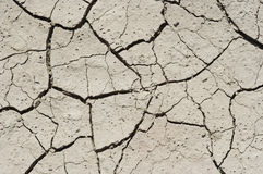 Dried ground. Detail of the parched earth - dried ground Stock Photo