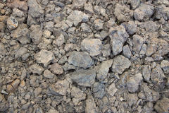 Dried ground background Royalty Free Stock Photography