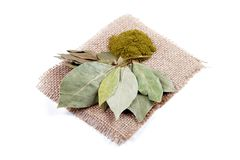 Dried and ground bay leaves Stock Photos