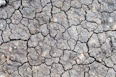 Dried ground covered with cracks. Stock Images