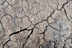 Dried ground covered with cracks. Stock Photo