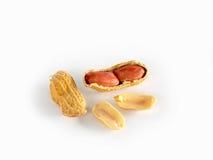Dried ground nut. On white background Stock Photo
