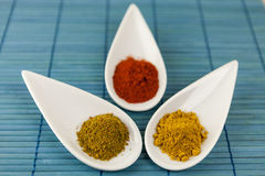 Dried ground spices in ceramic spoons Royalty Free Stock Photography
