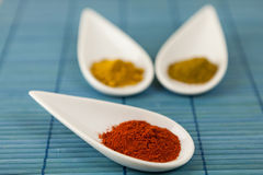 Dried ground spices in ceramic spoons Stock Photography