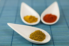 Dried ground spices in ceramic spoons Royalty Free Stock Images