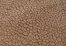 Dried Ground Texture Royalty Free Stock Image