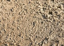 Dried ground Stock Photos