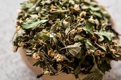 Dried Hawthorn / Crataegi folium flore in wooden ladle. Organic concept royalty free stock image
