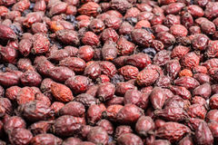 Dried hawthorn fruit. Natural berry beverage production.  medicinal product. alternative medicine Royalty Free Stock Photo