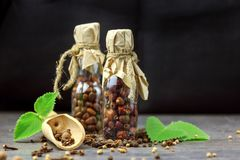 Dried hawthorn fruits on black background. Front view stock images