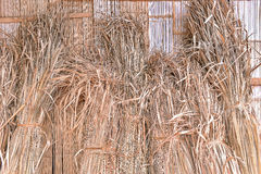 Dried haystack lean against the wall Royalty Free Stock Photography