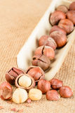 Dried hazelnut Stock Photos