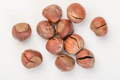 Dried hazelnut Stock Photo