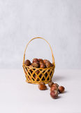 Dried hazelnuts in basket Stock Photography