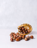 Dried hazelnuts in basket Stock Images