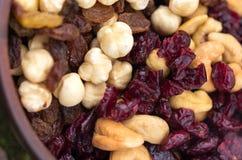 Dried hazelnuts, cashews, almonds and raisins. stock image