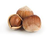 Dried hazelnuts isolated Stock Photo