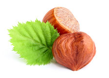 Dried hazelnuts with leaves. Royalty Free Stock Photos