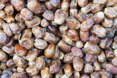 Dried Heap of Oleaster in Turkish Nuts Bazzar Royalty Free Stock Photo
