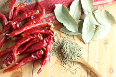 Dried herb and spice Royalty Free Stock Image