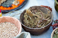 Dried Herbal Stock Image