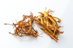 Dried herbal drugs of China on white background royalty free stock images