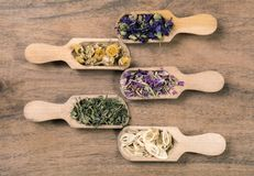Dried herbal tea flowers stock photography