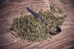 Dried herbal tea on spoon Royalty Free Stock Image