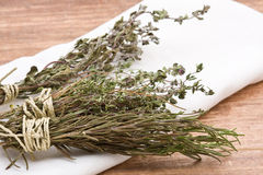 Dried herbs Stock Image