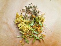 Dried herbs on paper royalty free stock photography