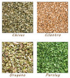 Dried Herbs (Chives, Cilantro, Parsley, Oregano) Royalty Free Stock Image