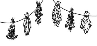 Dried herbs flat vector style black and white ornament. Dried herbs flat vector style ornament stock illustration
